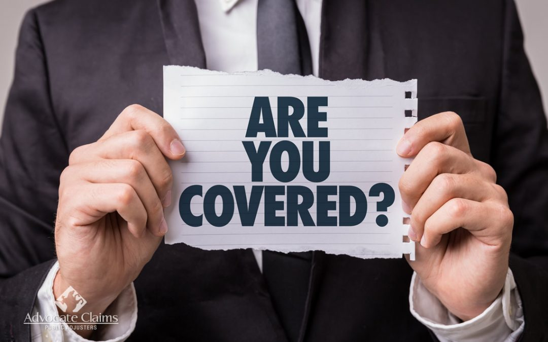 Do You Know What Is In Your Florida Insurance Policy?